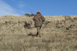 louer terre pour la chasse